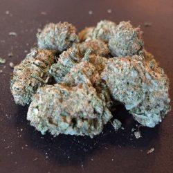 Lavender-KUSH-Sativa